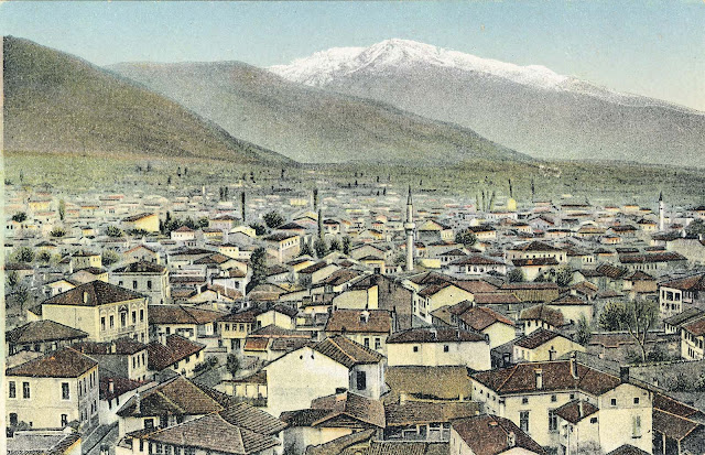 Panorama of Bitola eastward made from the Clock Tower in 1917, overlooking the Peliser in the background.