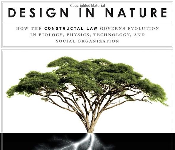 LOOK&LISTEN: Design in Nature / Adrian Bejan