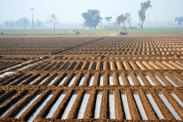 Image Atrribute: Most of Pakistan's agriculture ultimately relies on Indus water. aaabbbccc / shutterstock