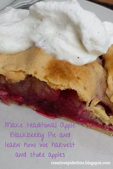 make a traditional Irish  apple blackberry pie and learn how to harvest and store apples through out the winter