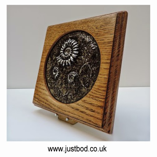 Fossil ammonites wall plaque