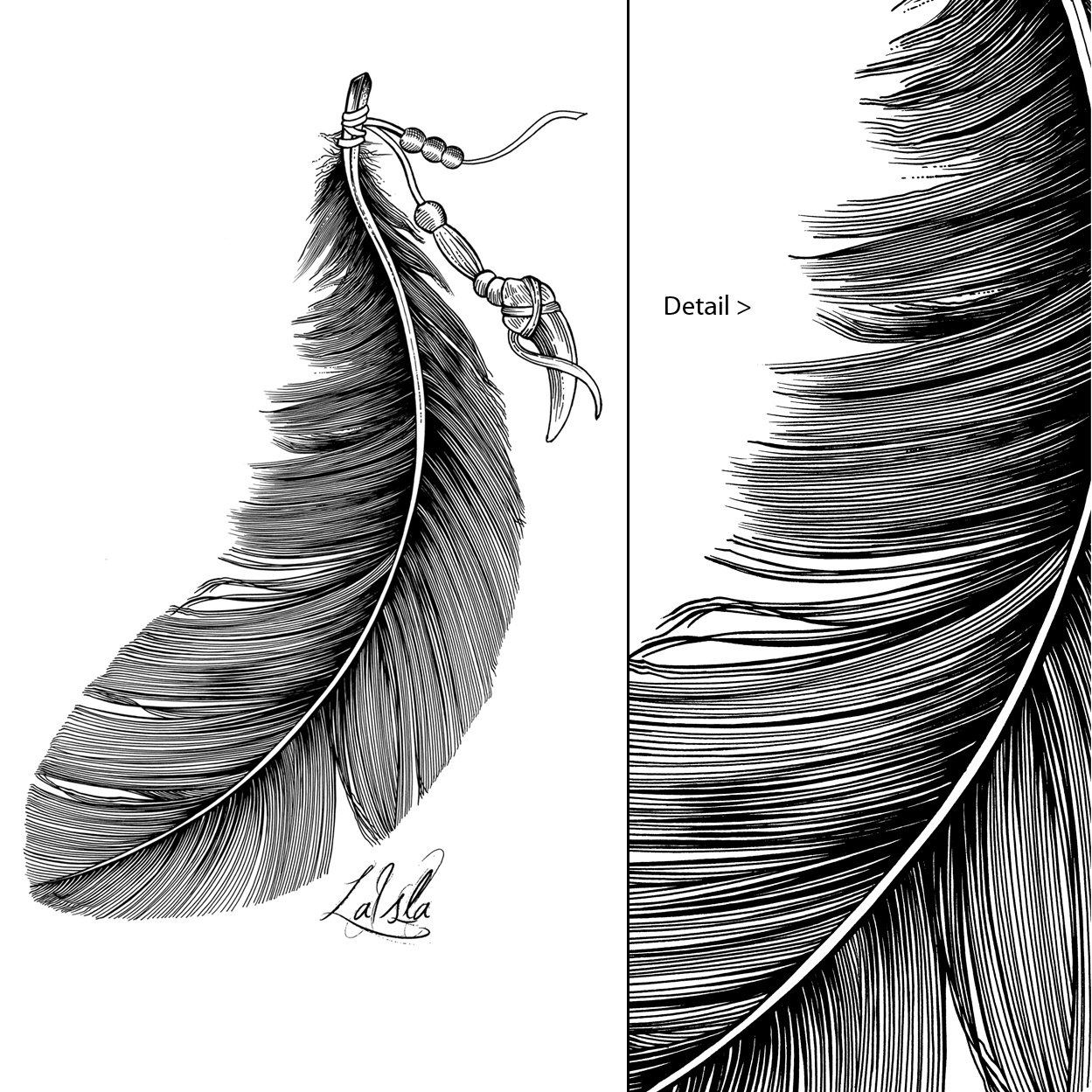 Line Drawing Feather : Thirsty fly feather
