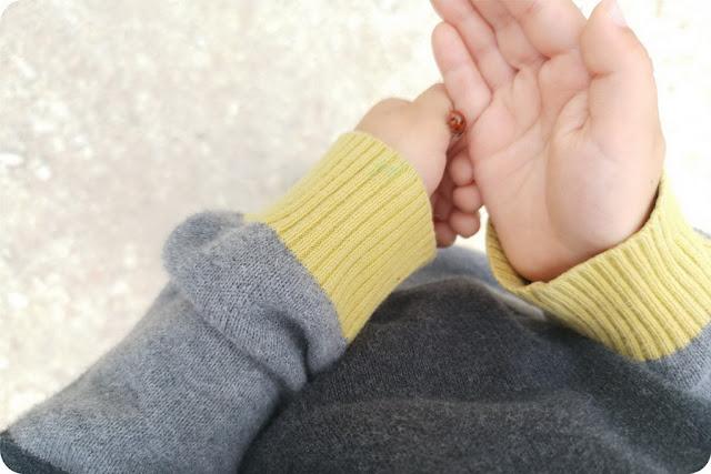 legame fra bambini e terra