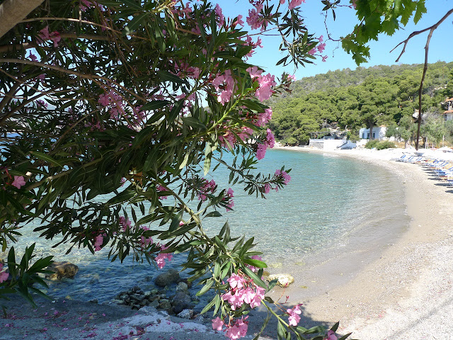 Plaża pod Monastyrem Zoodochos Pigi - plaże Poros cz. III - Beach under Zoodochos Pigi Monastery - beaches of Poros part 3