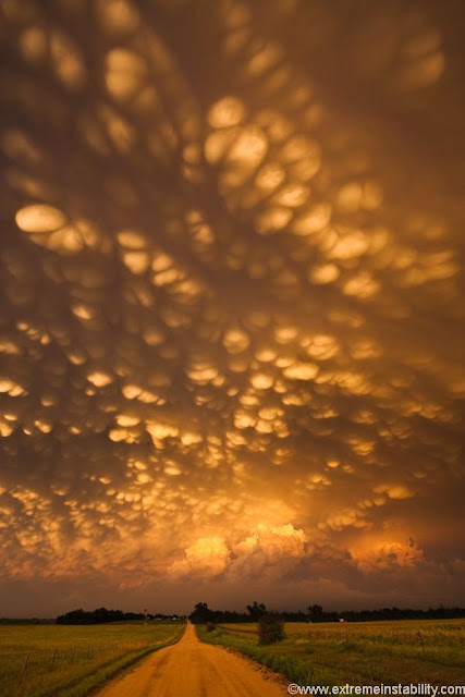 Mammatus clouds at phenomenal sunset