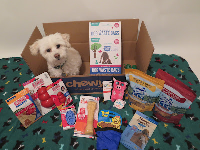 We Won the BlogPaws & Chewy.com contest and a fabulous Pet Travel Products prize!  Travel products for dogs, Pet travel, pet products for travel, dog treats,