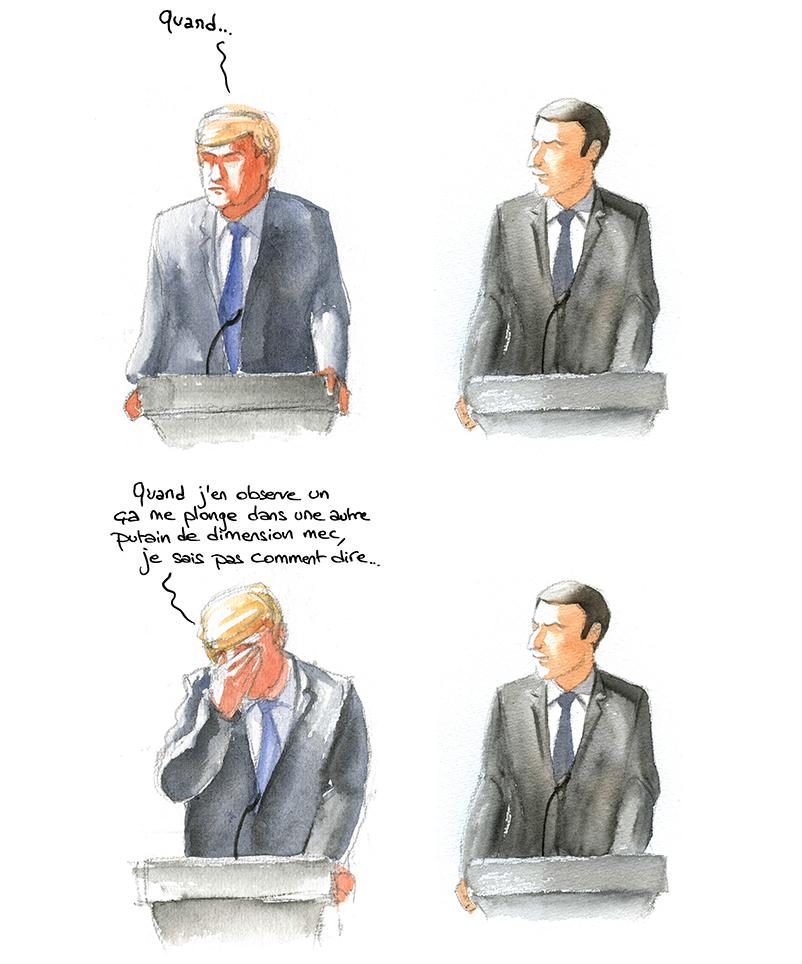 esthétique comparée, Trump craque