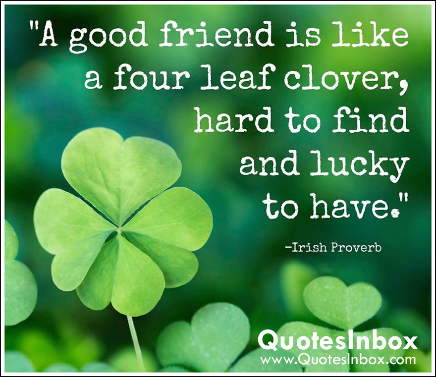 A Good Friend Is Like A Four Leaf Clover Others Forum