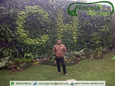Tukang Taman Vertikal Malang