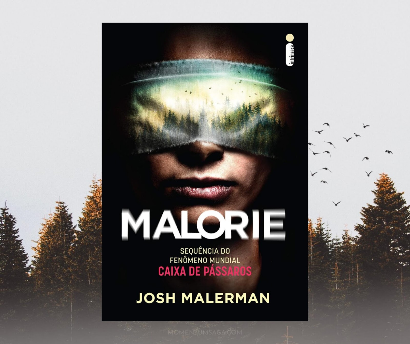 Resenha: Malorie, de Josh Malerman