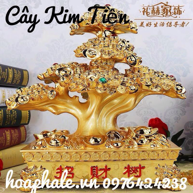 Cay kim tien tai Quan Hai Ba Trung