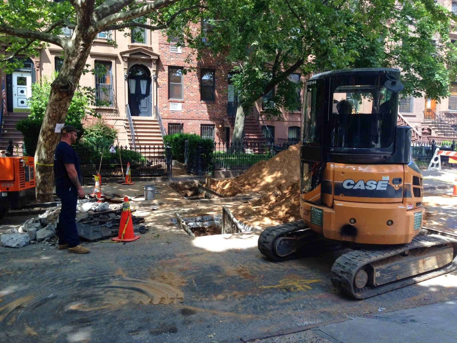 Brooklyn Streets Carroll Gardens June 2014