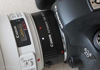 Canon EOS 6D / EF 70-300mm f/4-5.6L IS USM lens / Extension Tue