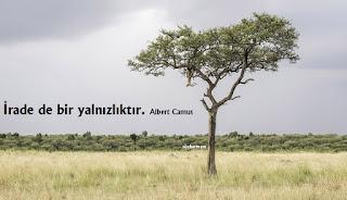 albert camus sözleri, albert camus sözleri facebook, filozof sözleri, ünlü düşünürlerin etkileyici sözleri, büyük düşünür sözleri, ünlü düşünürlerin özlü sözleri, yabancı yazarların sözleri kısa