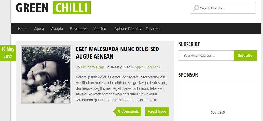 GreenChilli - Free WordPress Theme For Bloggers