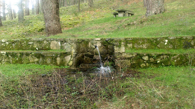 Fuente Fría de la Panera - Alfonsoyamigos