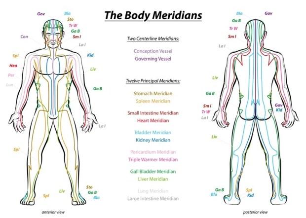 Κάθε μεσημβρινός στο σώμα ανταποκρίνεται σε διαφορετικό όργανο