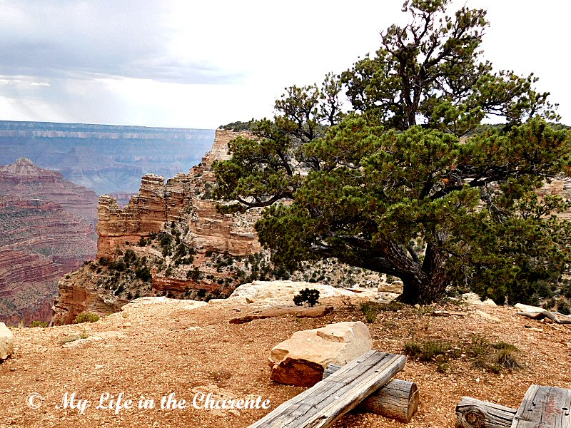 north rim chat sites Instant savings with secret prices plus, stay 10 nights, get 1 free book now on hotelscom using real guest reviews for real savings on your next room.