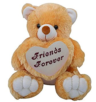 Friends Forever Teddy Bear Image