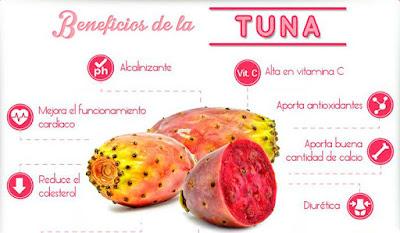 La tuna mejora el funcionamiento cardiáco, reducel el colesterol, aporta salud a tus huesos y es una fruta diurética.