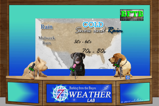 BFTB NETWoof weather desk with forecast map