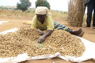 Karanga-zinachambuliwa