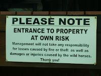 Wild Horse Live Here - Kaapeshoop