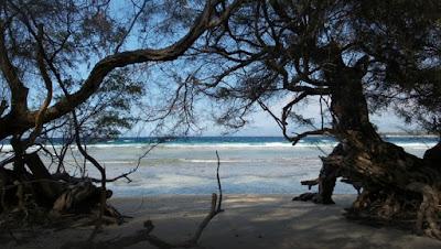 Pesona Patai Gili Meno di Lombok