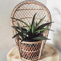 http://beaj.tictail.com/product/mini-chaise-rotin