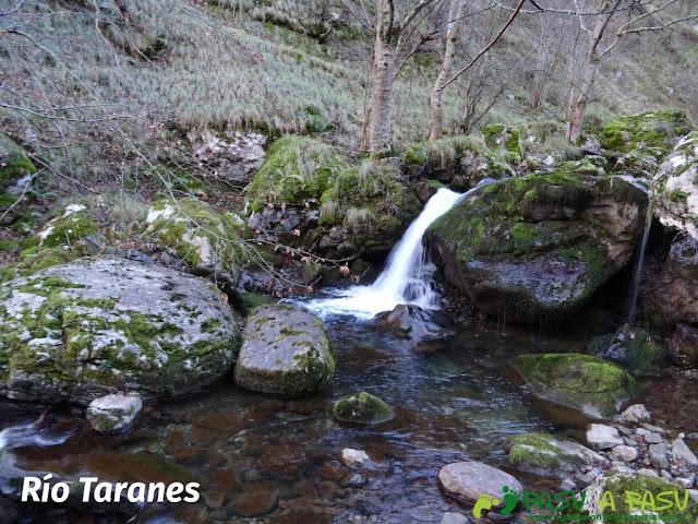 Río Taranes en Ponga