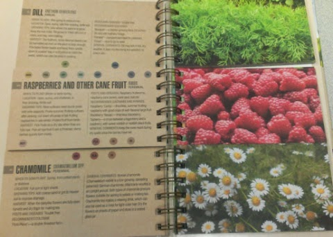 The Mix & Match Guide to Companion Planting sample 1