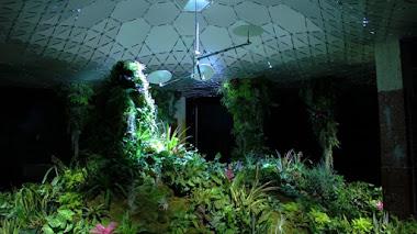 Plantas para un jardín subterráneo. Lowline y Jardín Botánico de Brooklyn