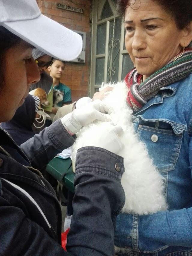 Alcaldía de Facatativá superó las 4 mil mascotas vacunadas