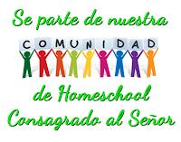 Comunidad HCS