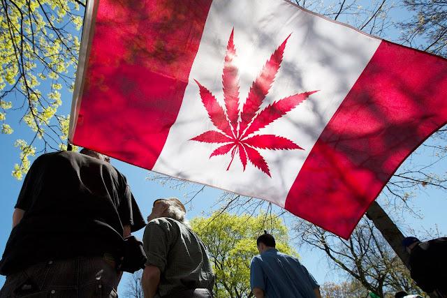 la marijuana è legale in Canada