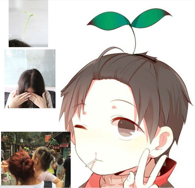 People wearing bean sprout hair pins