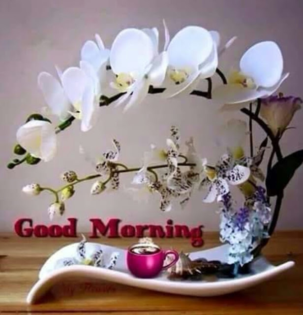 Good morning wishes English#Hindi 2019
