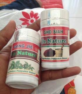 Obat Sipilis Alami Khasiat Tumbuhan Tradisional