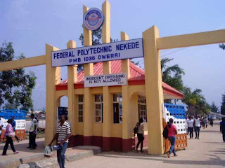 List of NUC, NBTE and NCCE Accredited Courses in Federal Polytechnic, NEKEDE [NEKEDEPOLY]