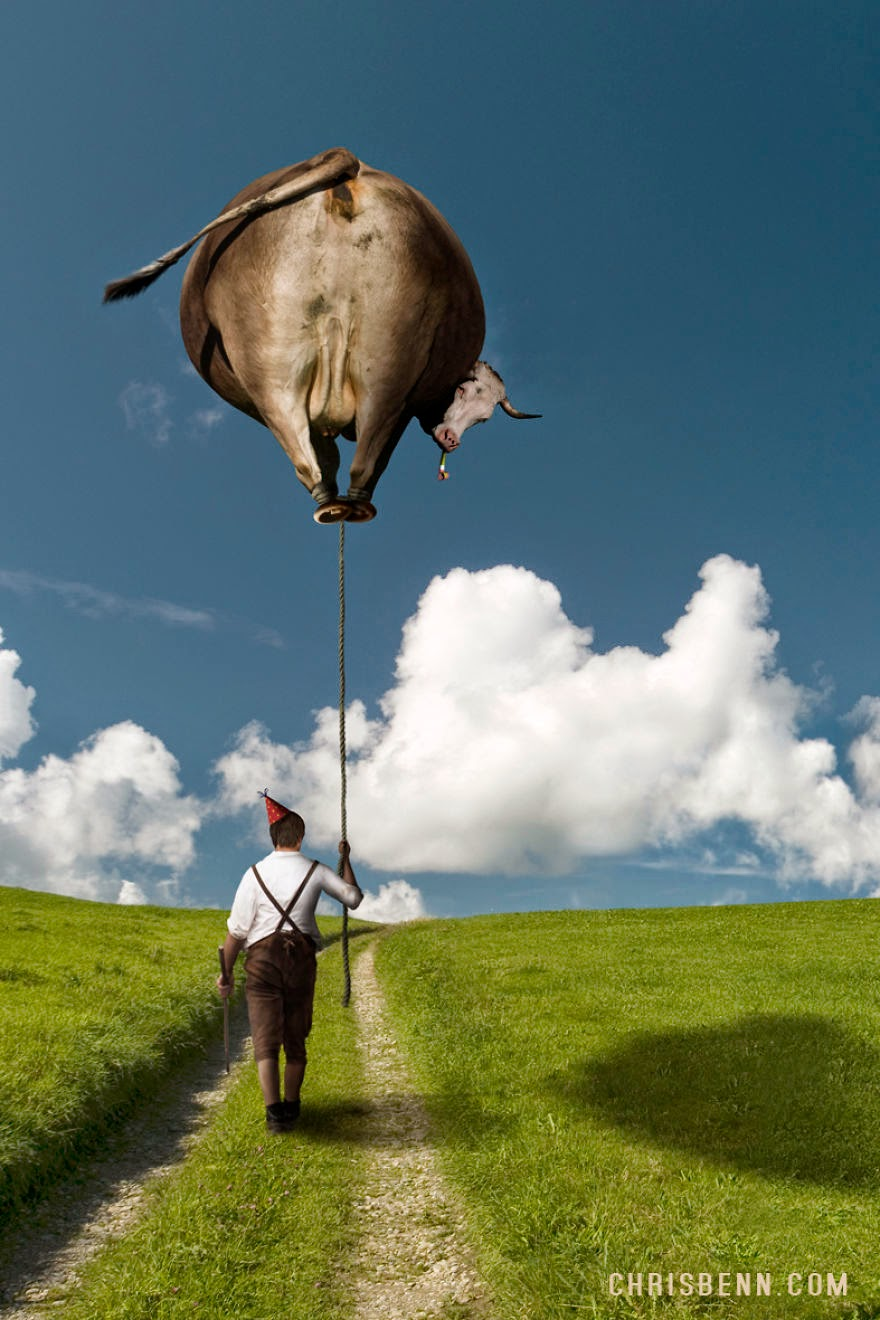 08-Farmer-Walking-his-Cow-Chris-Bennett-Animal-Photographs-of-Surreal-Art-www-designstack-co