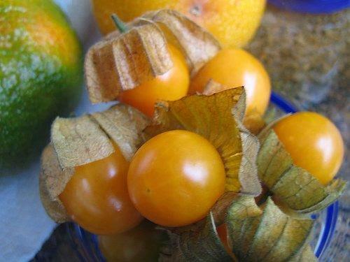Hojas de uvilla para adelgazar