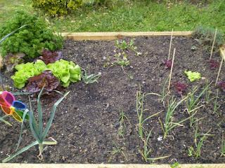 Decorer Jardin Avec Des Bombones En Verre