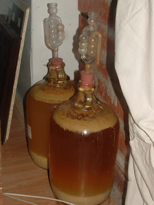 Two glass demi-johns full of cider
