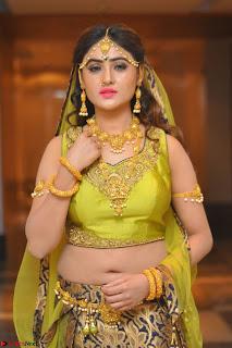 Sony Charishta in Green Choli Ghagra Transparent Chunni Ethnic Wear March 2017 081.JPG