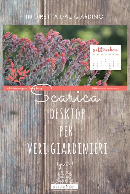 scarica il desktop per veri giardinieri - settembre - un giardino in diretta