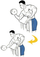 Concentration Biceps Curl