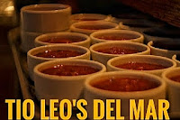 Logo for Tio Leo's Del Mar Business Website.