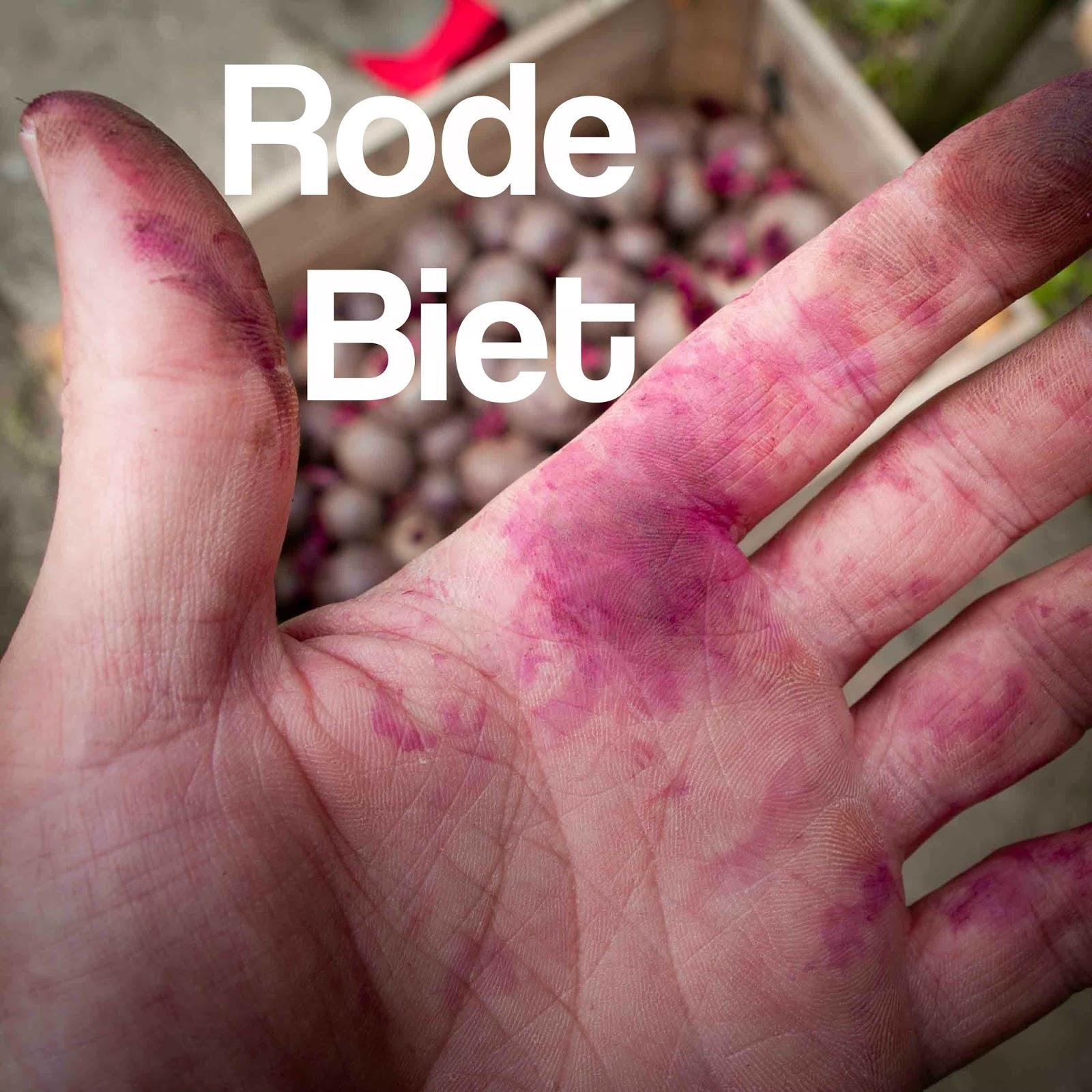 rode biet bieten bietjes