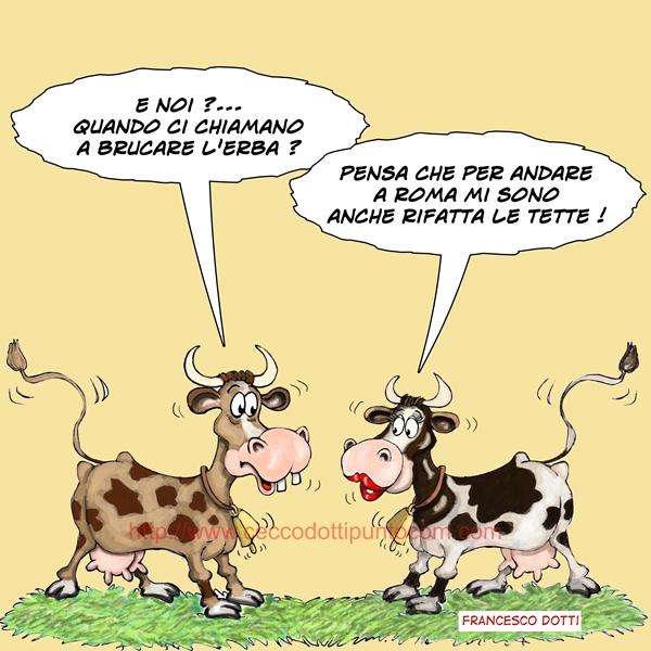 Francesco Dotti vignette