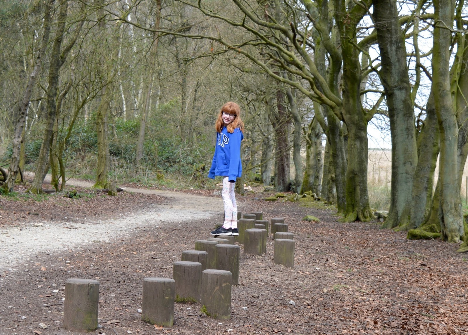 A Review of Darwin Forest & The Peak District with Tweens  - woodland trails